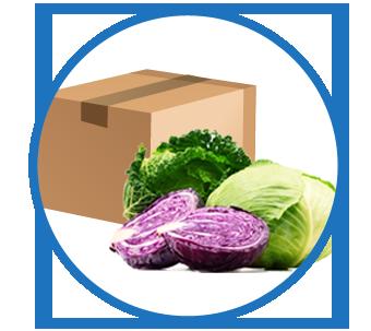 Anwendungsbereich Lebensmittelindustie