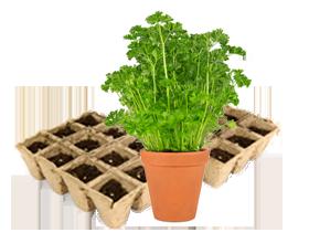 Anwendungsbereich Gartenbaumarkt Megaplast Verpackungsinnovation